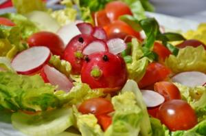 Saladette - Damit der Salat knackig bleibt